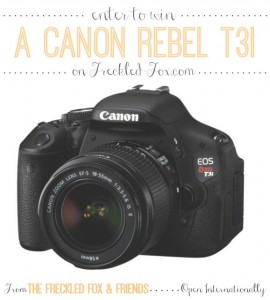 Freckled_fox_canon_rebel_giveaway_Group_sponsor_collaboration_2